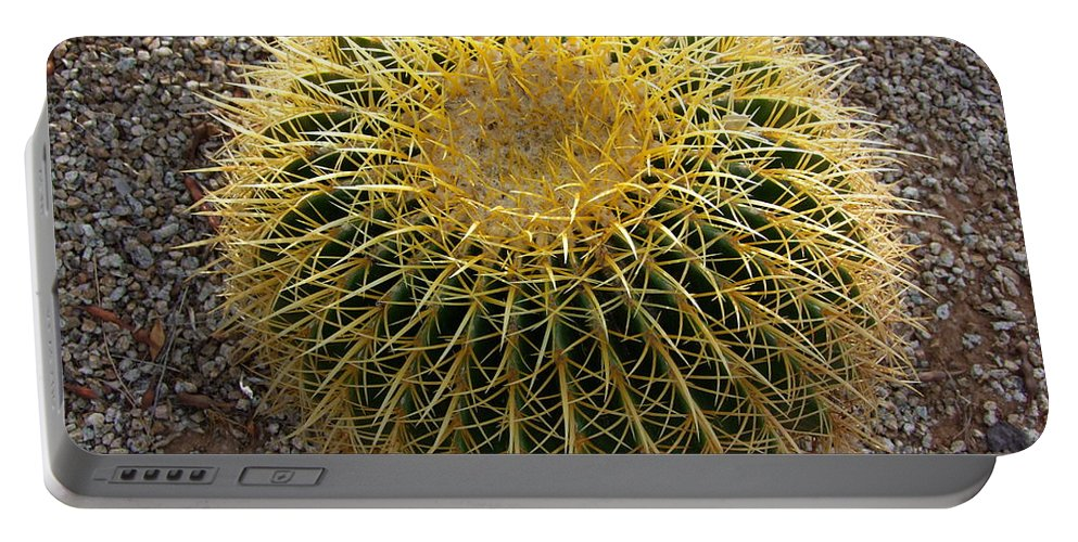Cactus Portable Battery Charger featuring the photograph Gold Barrel Cactus  No 1 by Mary Deal