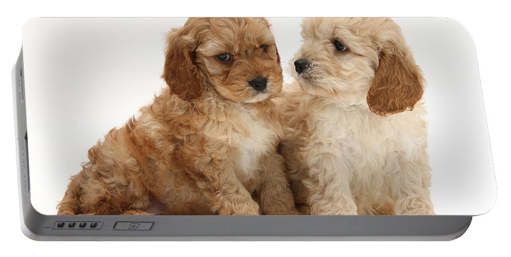 Animal Portable Battery Charger featuring the photograph Golden Cockerpoo Puppies by Mark Taylor