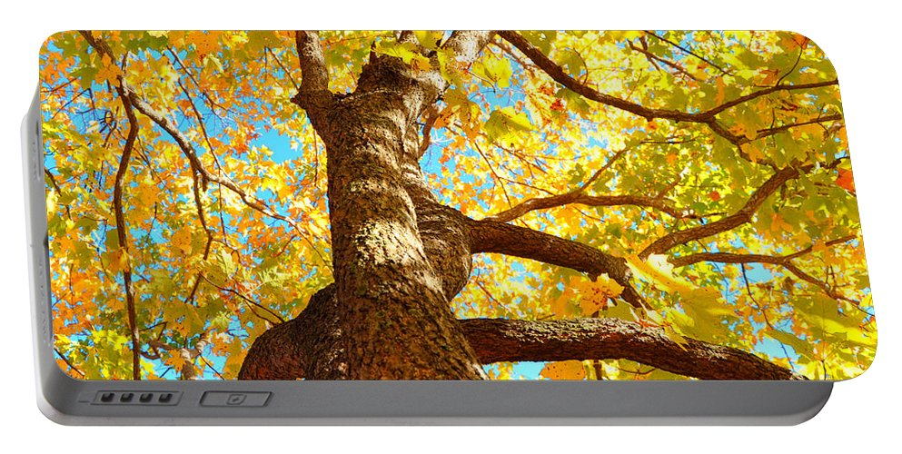 Yellow Leaves Portable Battery Charger featuring the photograph Golden Green by Brittany Horton