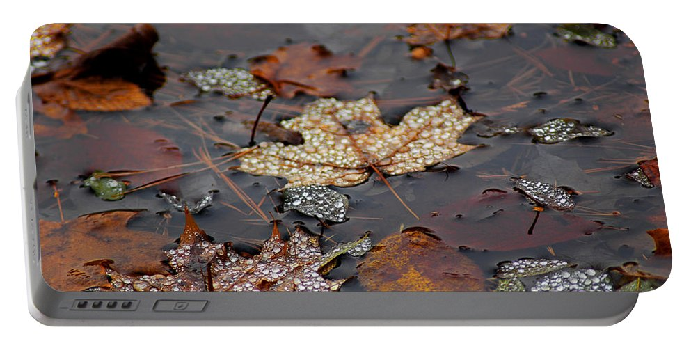 Usa Portable Battery Charger featuring the photograph Golden Maple Dew Drops by LeeAnn McLaneGoetz McLaneGoetzStudioLLCcom