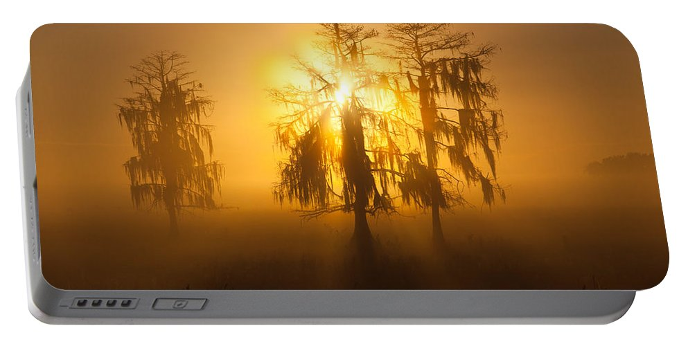 Usa Portable Battery Charger featuring the photograph Golden Morning by Claudia Domenig