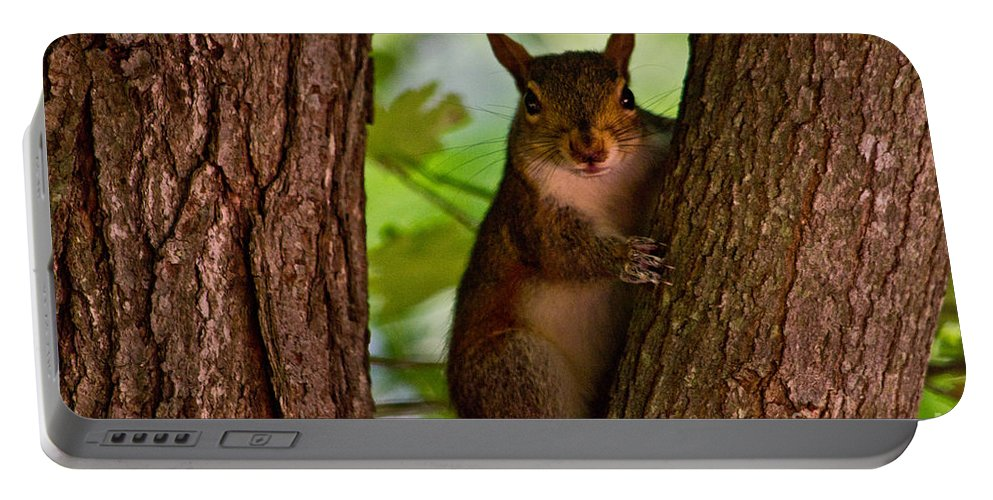 Got Portable Battery Charger featuring the photograph Got My Eye On You by Scott Hervieux