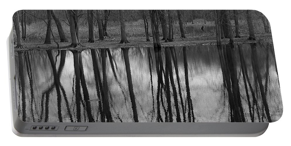Trees Portable Battery Charger featuring the photograph Gray Day Reflections by Michael Peychich