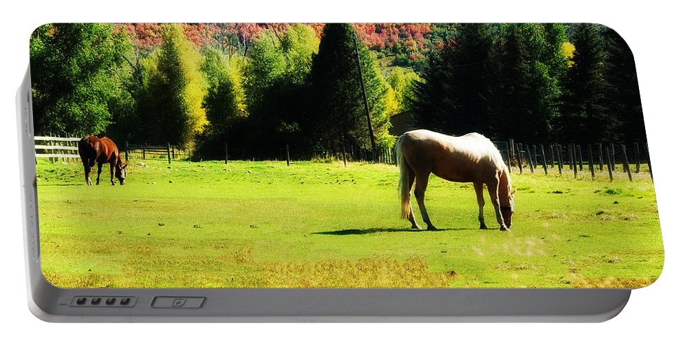 Horse Portable Battery Charger featuring the photograph Grazing Autumn by La Rae Roberts