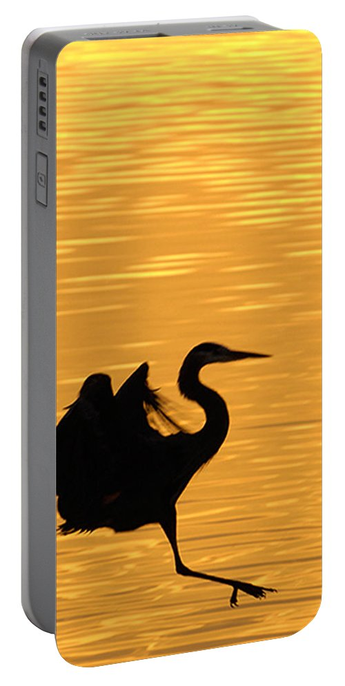 The Great Blue Heron. Pretty Site Portable Battery Charger featuring the photograph Great Blue Heron by Randall Branham