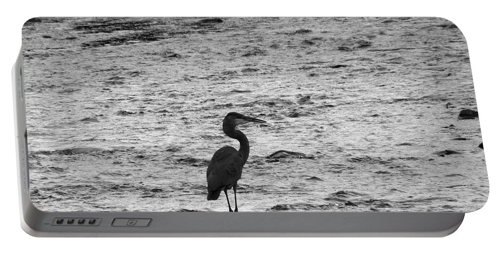 Heron Portable Battery Charger featuring the photograph Great Grey Heron Silhouette by Darleen Stry