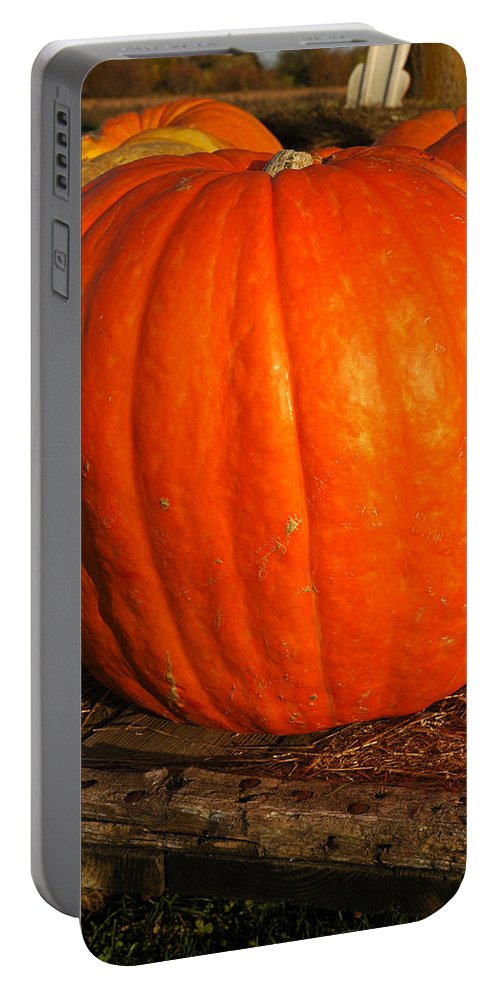 Food And Beverage Portable Battery Charger featuring the photograph Great Orange Pumpkin by LeeAnn McLaneGoetz McLaneGoetzStudioLLCcom