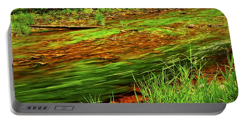 River Portable Battery Charger featuring the photograph Green Forest River by Elena Elisseeva