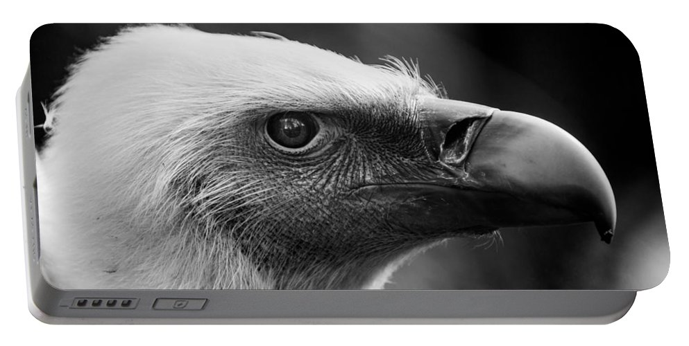Griffon Portable Battery Charger featuring the photograph Griffon Vulture by Hakon Soreide