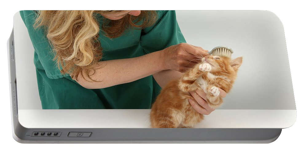 Animal Portable Battery Charger featuring the photograph Grooming A Kitten by Mark Taylor