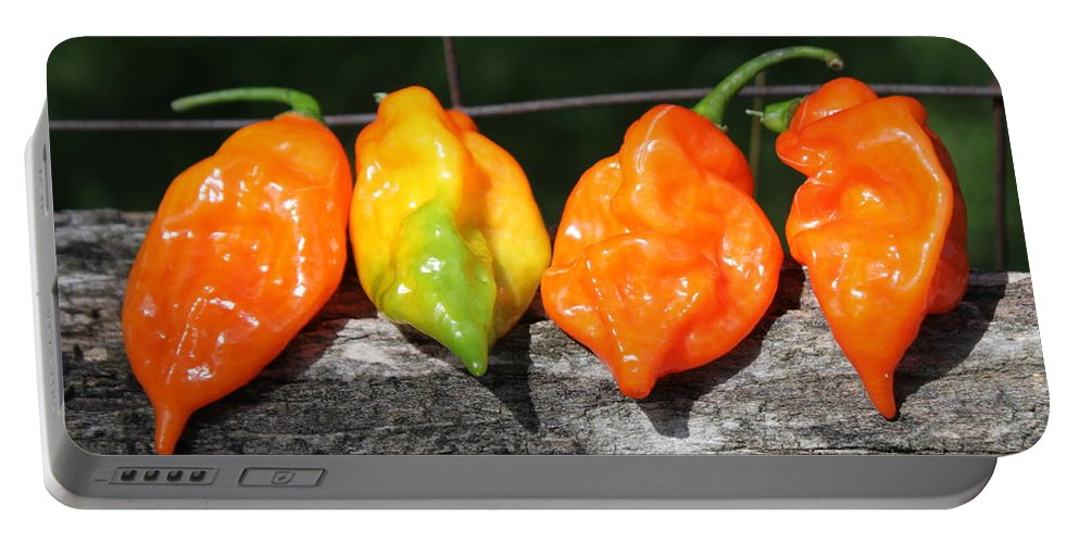 Pepper Portable Battery Charger featuring the photograph Habaneros by Lauri Novak