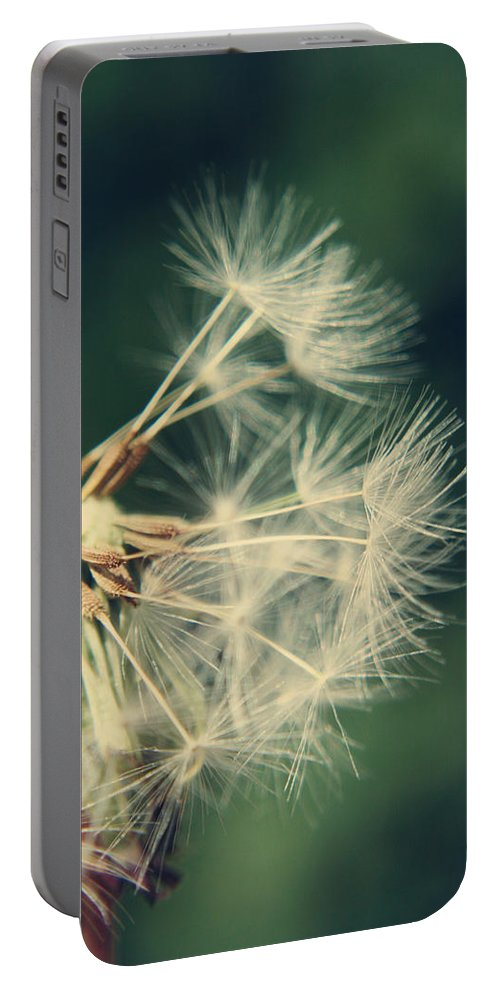 Dandelion Portable Battery Charger featuring the photograph Hanging On by Heather Applegate