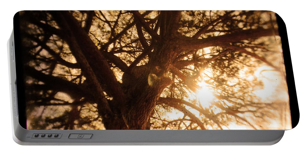 Bright Portable Battery Charger featuring the photograph Happiness Lives by Andrew Paranavitana