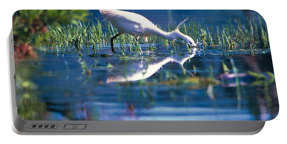 Action Portable Battery Charger featuring the photograph Head Dip by Alistair Lyne