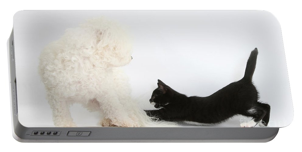 Nature Portable Battery Charger featuring the photograph Hey, Thats My Tail by Mark Taylor
