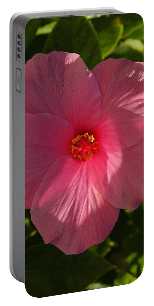 Hibiscus Portable Battery Charger featuring the photograph Hibiscus by David Weeks