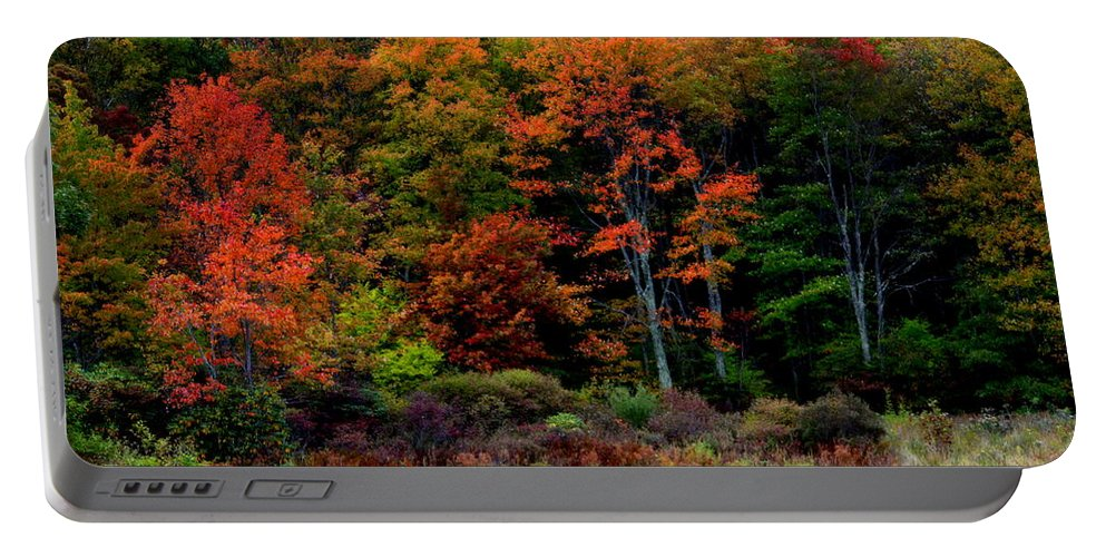 Autumn Portable Battery Charger featuring the photograph Hidden Valley Lake by Karen Wiles