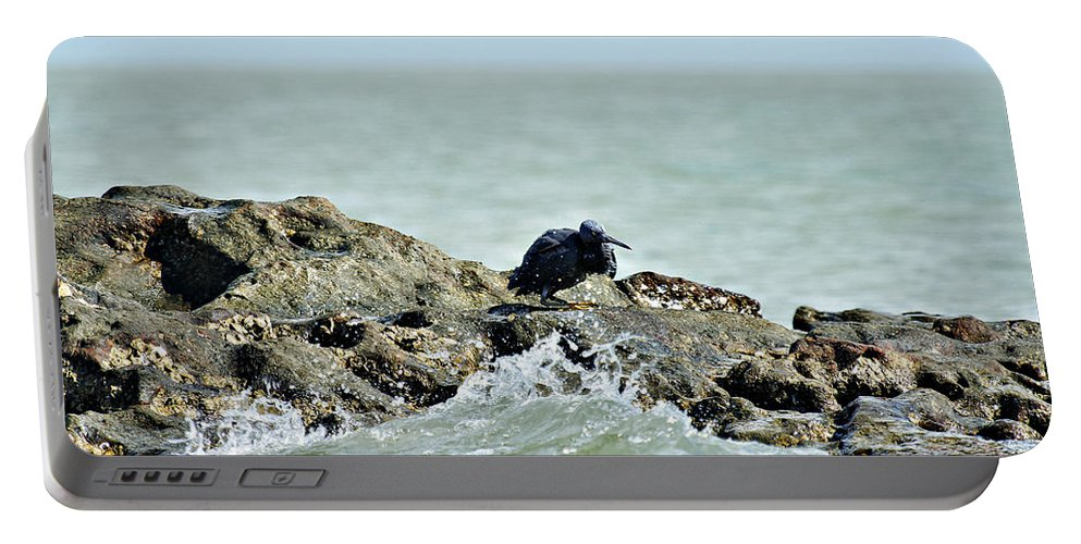 Dark Reef Egret Portable Battery Charger featuring the photograph High Tide by Douglas Barnard