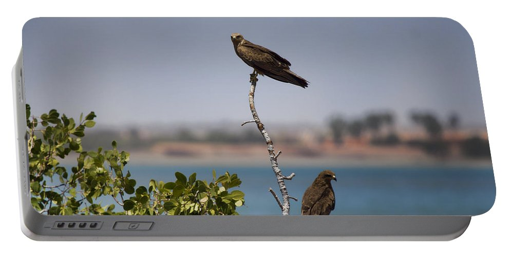 Higher Up The Tree Portable Battery Charger featuring the photograph Higher Up The Tree by Douglas Barnard