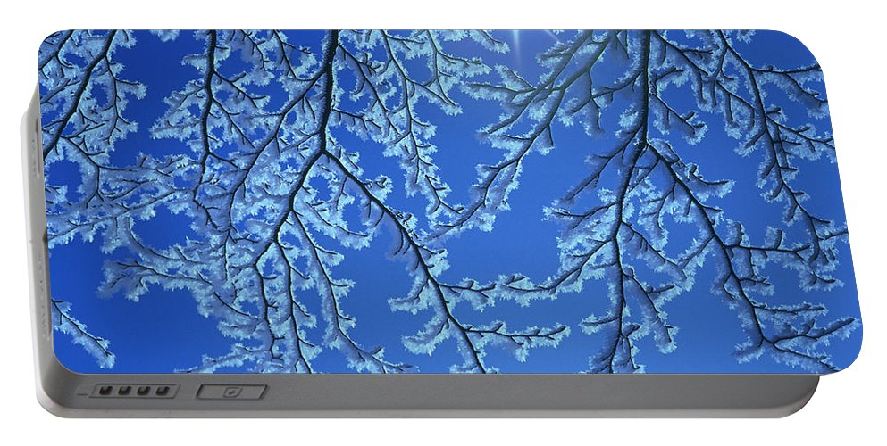 Hoar Frost Portable Battery Charger featuring the photograph Hoar Frost by Hermann Eisenbeiss and Photo Researchers