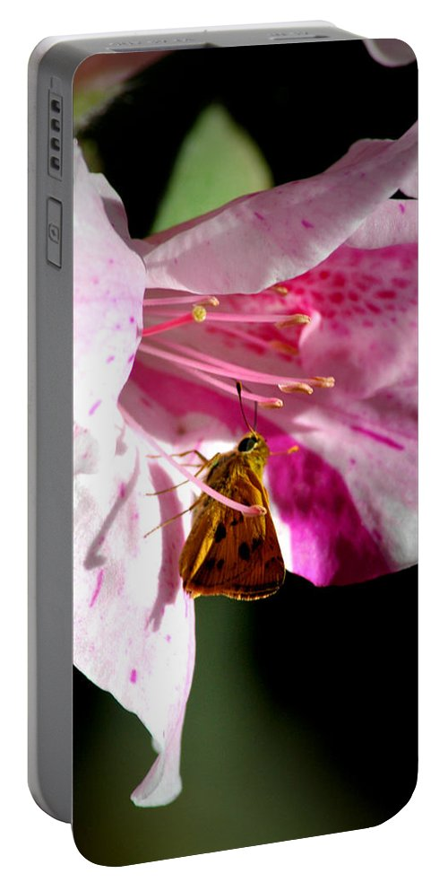Butterfly Portable Battery Charger featuring the photograph Home Sweet Home by David Weeks