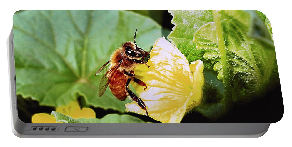 Bee Portable Battery Charger featuring the photograph Honeybee And Cantalope by Joyce Dickens