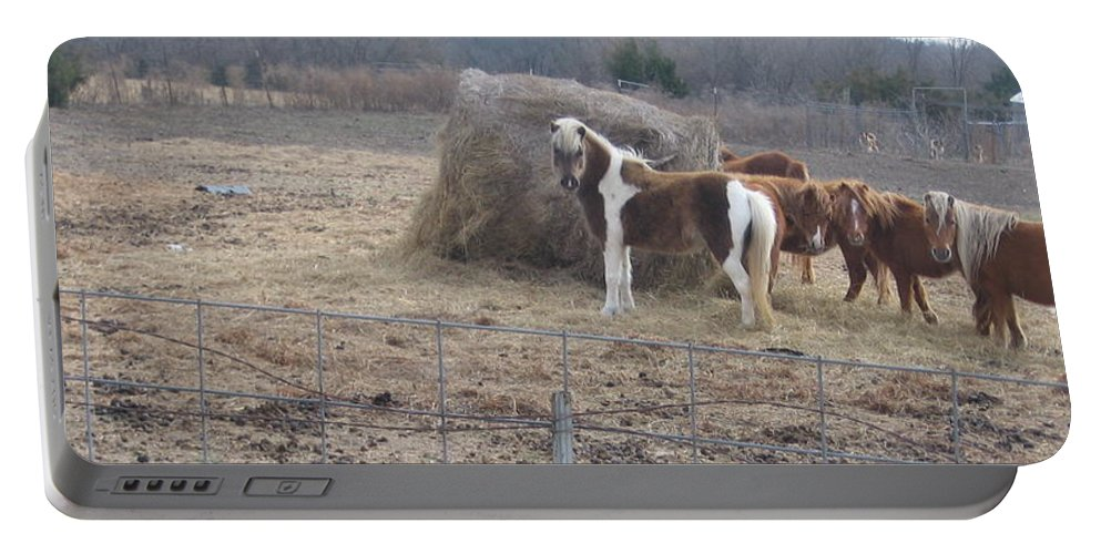 Portable Battery Charger featuring the photograph Horses by Amy Hosp