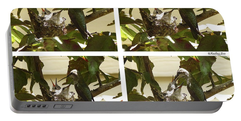 The Hummingbird Portable Battery Charger featuring the photograph Hummingbird Mother Feeding Her Two Babies by Xueling Zou