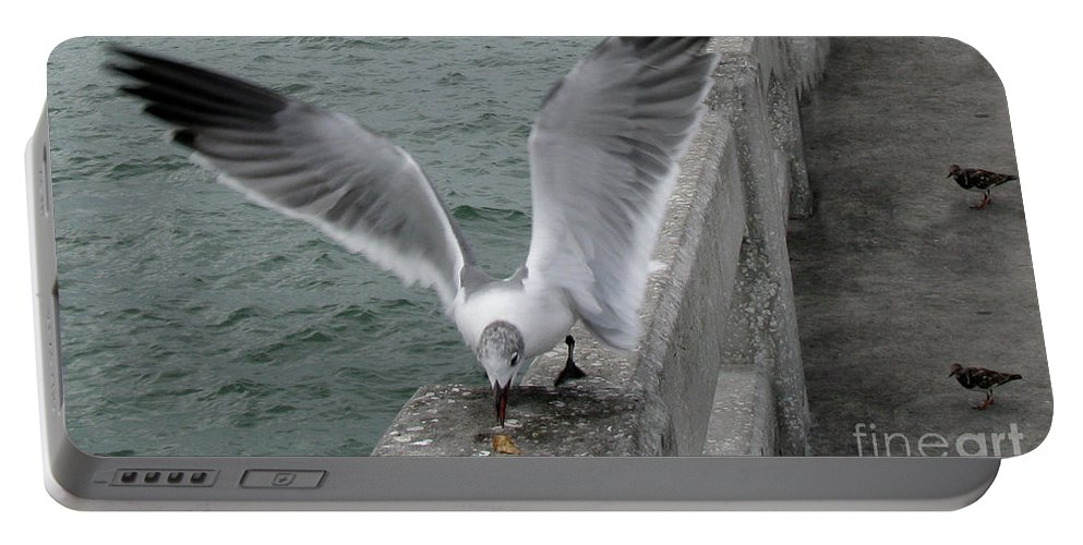 Birds Portable Battery Charger featuring the photograph I Got Here First by Donna Brown