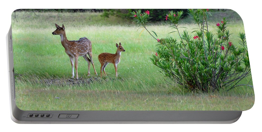 Deer Portable Battery Charger featuring the photograph I Got Your Back by Lynn Bauer
