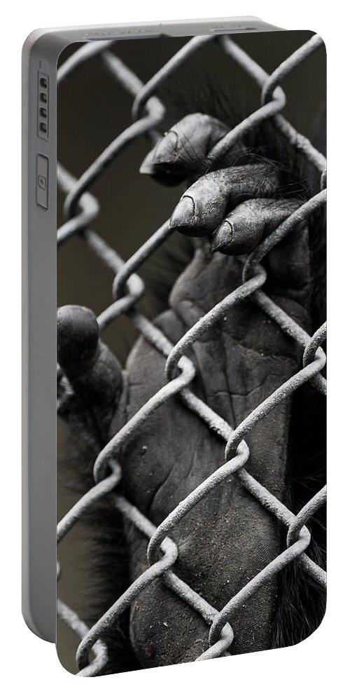 Hand Portable Battery Charger featuring the photograph I Want Out by Greg Nyquist