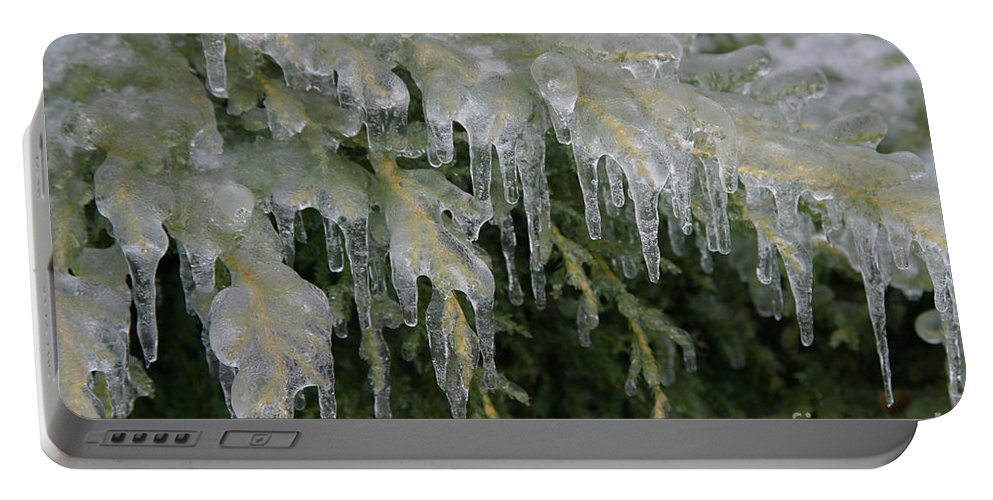Weather Portable Battery Charger featuring the photograph Ice-coated Arborvitae by Ted Kinsman