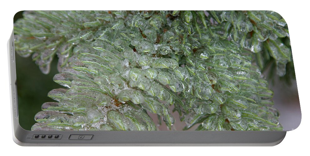 Ice Storm Portable Battery Charger featuring the photograph Ice-coated Norway Spruce by Ted Kinsman