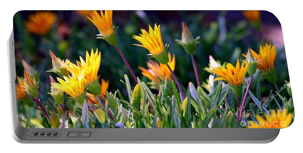 carpobrotus Chilensis Portable Battery Charger featuring the photograph Ice Plant by Henrik Lehnerer