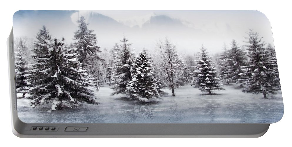Beautiful Portable Battery Charger featuring the photograph Iced Lake by Svetlana Sewell