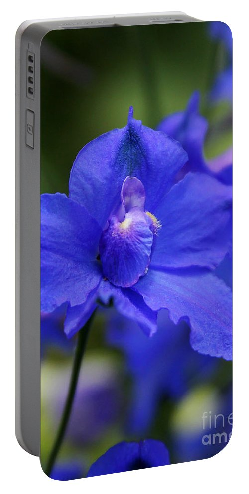 Blue Portable Battery Charger featuring the photograph In A Blue Mood by Sabrina L Ryan