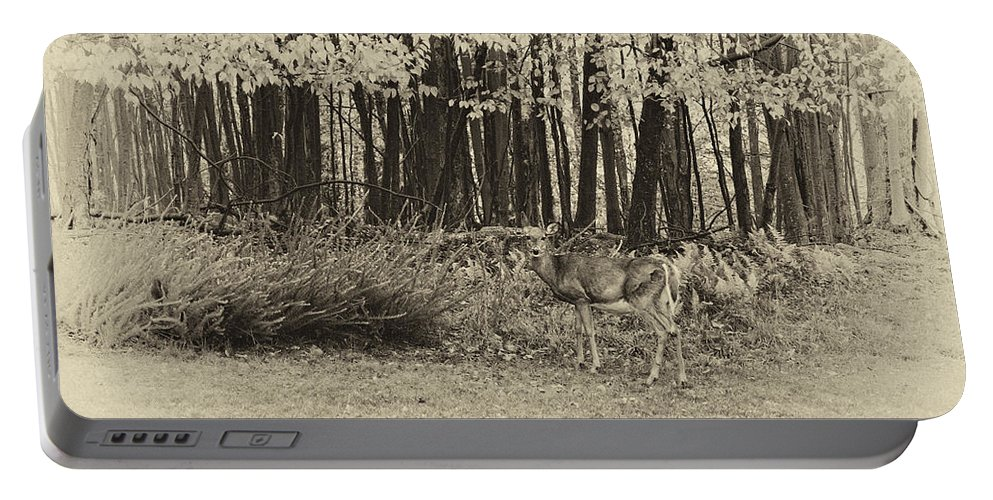 West Virginia Portable Battery Charger featuring the photograph In A Yellow Wood Antique by Steve Harrington