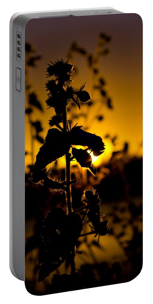 Sunset Portable Battery Charger featuring the photograph In Sunset's Glow by Mark Andrew Thomas