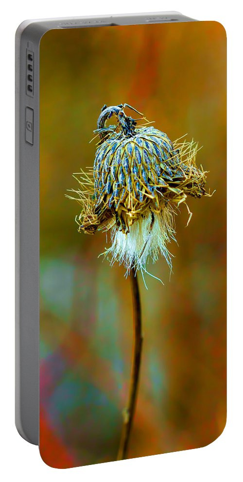 Macro Portable Battery Charger featuring the photograph Isolated Locoweed by Bill Tiepelman