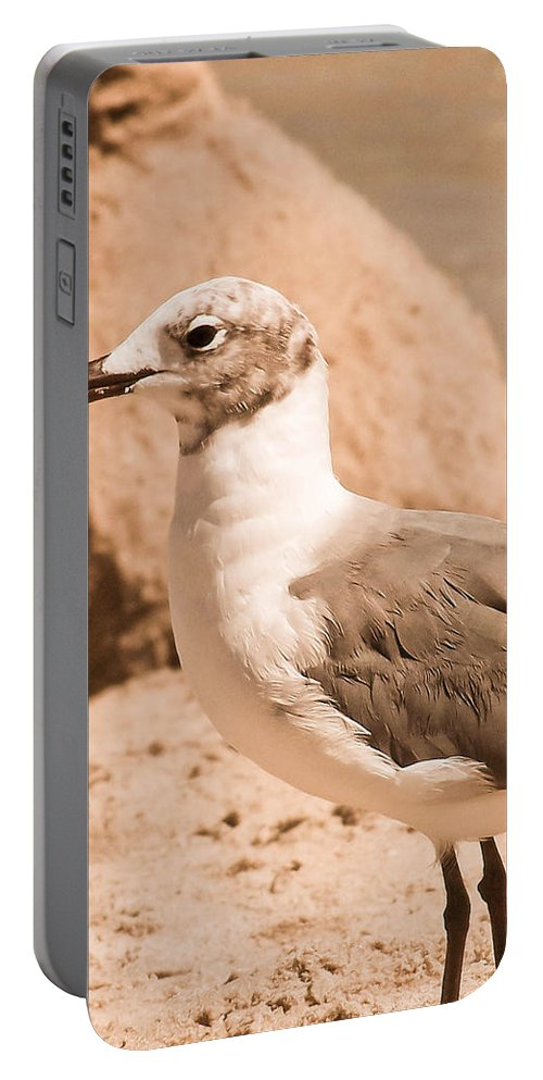 Seagull Portable Battery Charger featuring the photograph Jagr by Trish Tritz