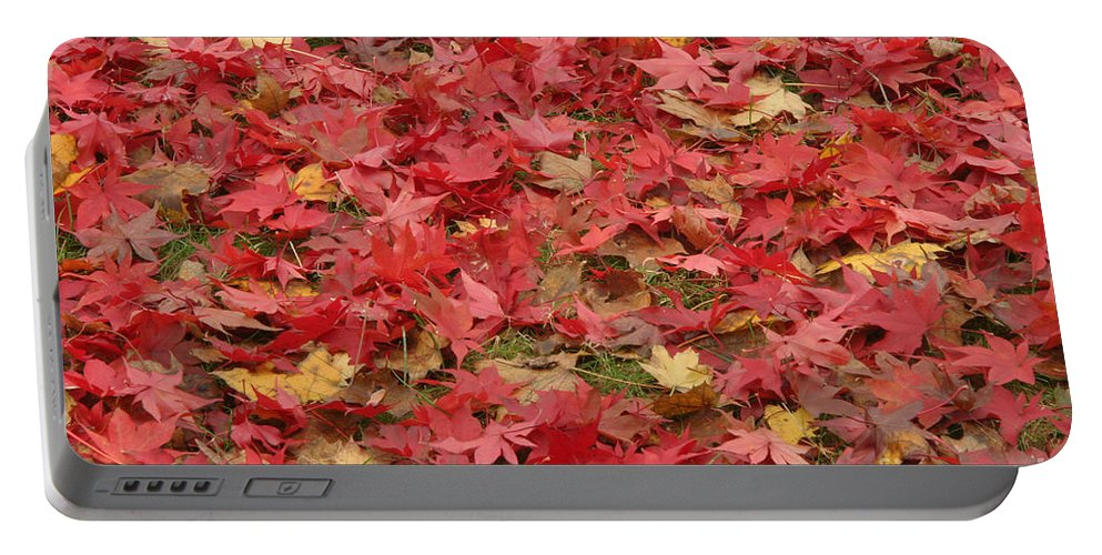 Japanese Red Maple Portable Battery Charger featuring the photograph Japanese Red Maple Leaves by Ted Kinsman