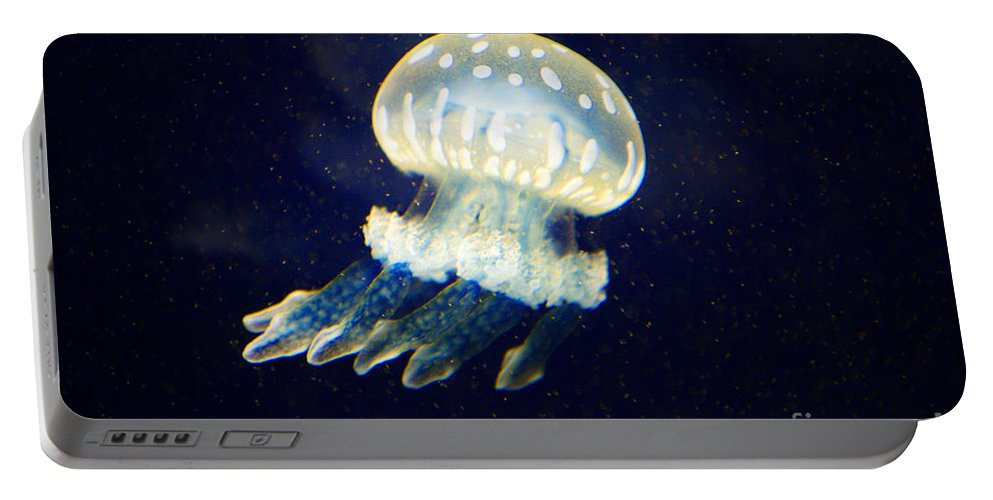 Jelly Fish Portable Battery Charger featuring the photograph Jelly Fish by Randy Harris