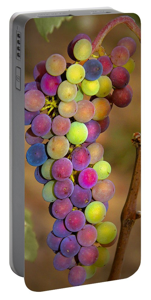 Grapes Portable Battery Charger featuring the photograph Jewel Tones by Jean Noren