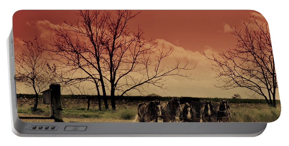 Horse Portable Battery Charger featuring the photograph Just Horsin' Around by Trish Tritz