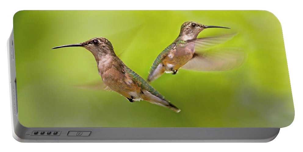 Hummingbird Portable Battery Charger featuring the digital art Keeping Watch by Betsy Knapp