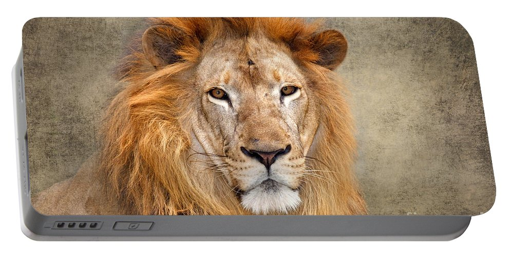 Asiatic Lion Portable Battery Charger featuring the photograph King Of Beasts Portrait Of A Lion by Louise Heusinkveld