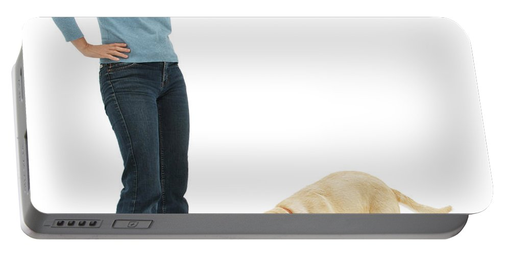 Nature Portable Battery Charger featuring the photograph Labrador Golden Retriever Pup Chewing by Mark Taylor