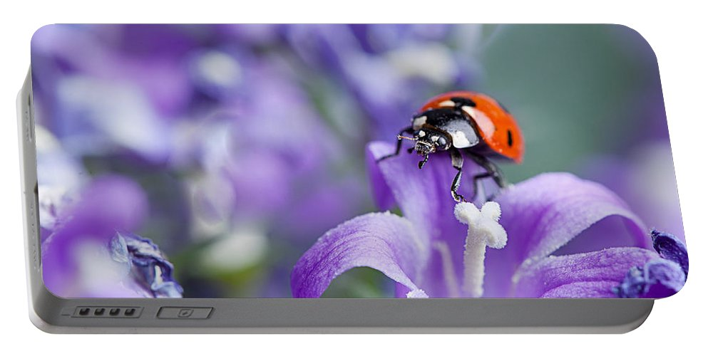 Ladybug Portable Battery Charger featuring the photograph Ladybug And Bellflowers by Nailia Schwarz