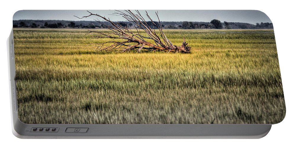 Charleston Portable Battery Charger featuring the photograph Laid To Rest by Andrew Crispi