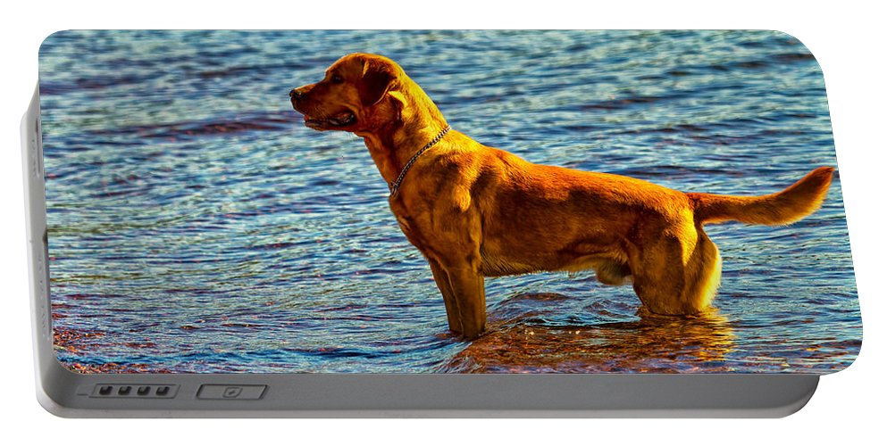 Lake Portable Battery Charger featuring the photograph Lake Superior Puppy by Linda Tiepelman